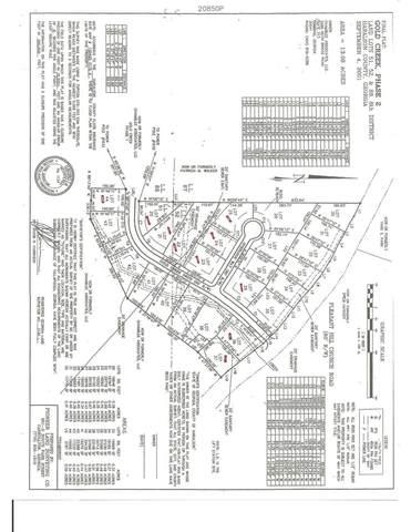 0 Gold Creek Drive, Tallapoosa, GA 30176 (MLS #9045143) :: Crown Realty Group