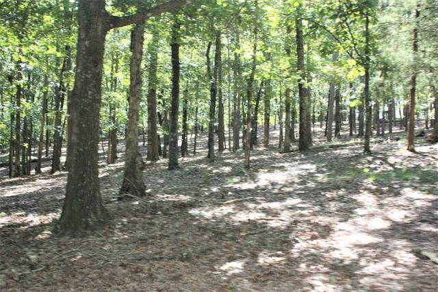 0 Sweetgum Commons Drive Lot, Fort Gaines, GA 39851 (MLS #9046460) :: Crown Realty Group