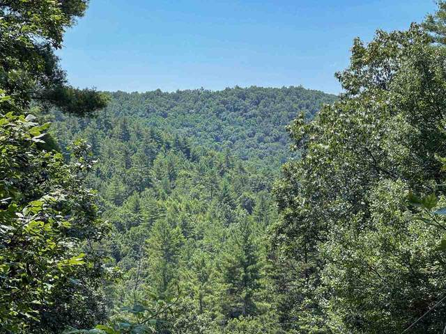 194 Toccoa Overlook Drive, Suches, GA 30572 (MLS #9046537) :: Rettro Group