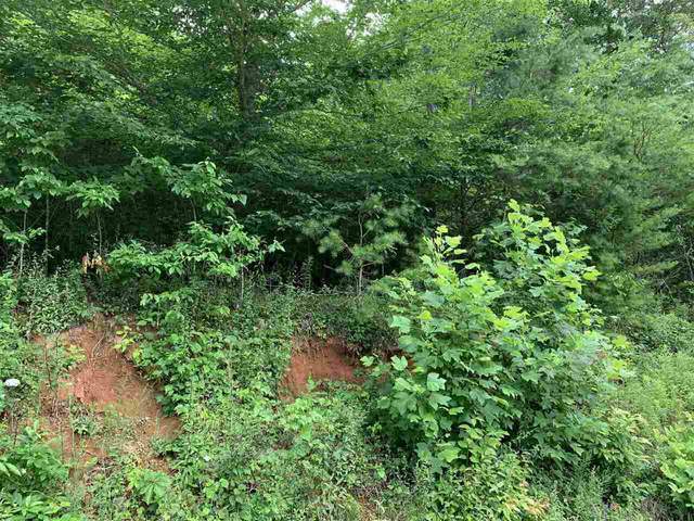 0 Middle Crk #1, Otto, NC 28763 (MLS #9047251) :: Morgan Reed Realty