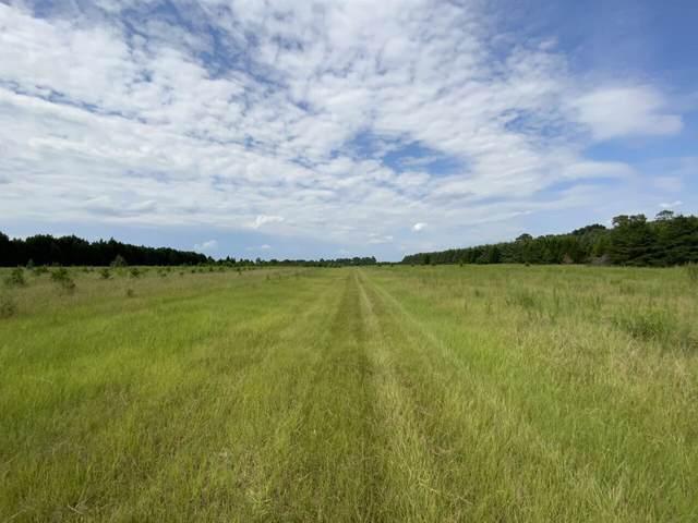 0 Cordele Highway Tract #4, Hawkinsville, GA 31036 (MLS #9047936) :: AF Realty Group