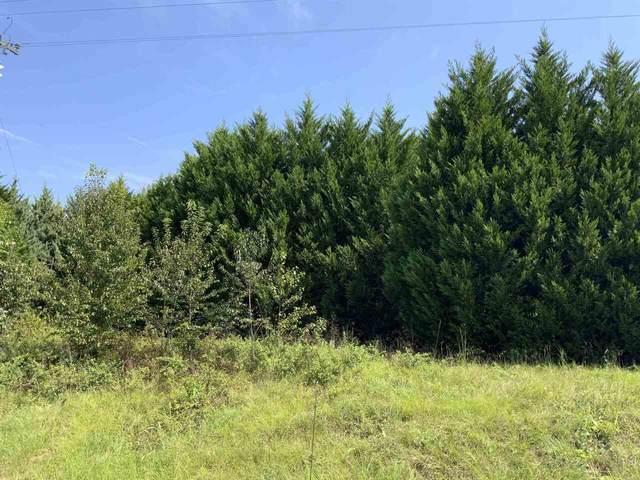 0 Cordele Highway Tract #5, Hawkinsville, GA 31036 (MLS #9047943) :: AF Realty Group