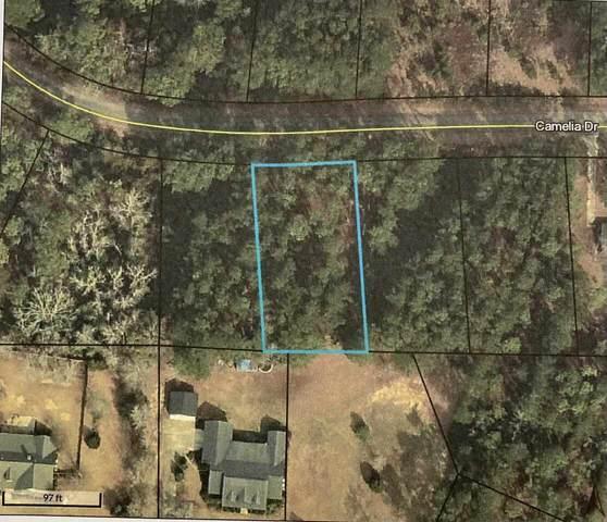 0 Camelia Drive Lot 7, Sylvania, GA 30467 (MLS #9048013) :: EXIT Realty Lake Country
