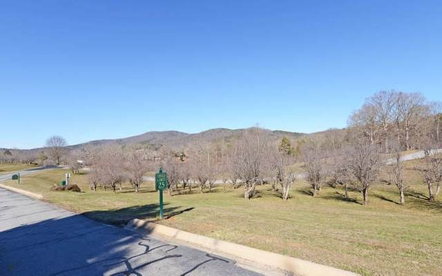 359 Yates Circle #359, Clarkesville, GA 30523 (MLS #9048202) :: Athens Georgia Homes