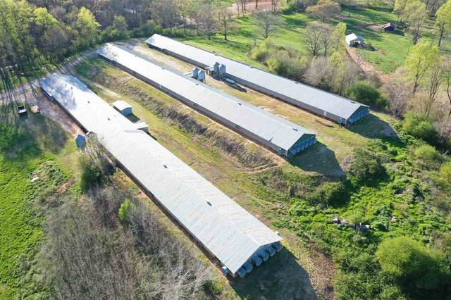189 Jackson Road, Cleveland, GA 30528 (MLS #9049647) :: Statesboro Real Estate