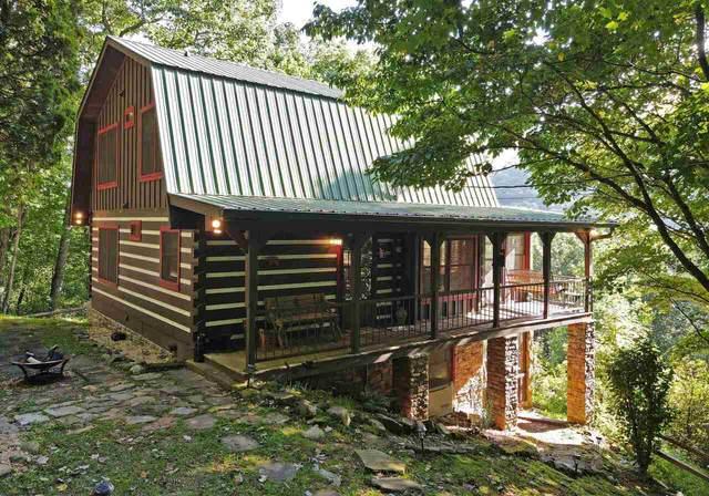 1582 Little Rock Crk, Cherry Log, GA 30522 (MLS #9049735) :: Houska Realty Group