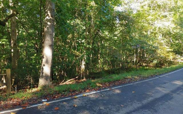 0 Matrix Lane Lot 855, Ellijay, GA 30540 (MLS #9049811) :: Houska Realty Group