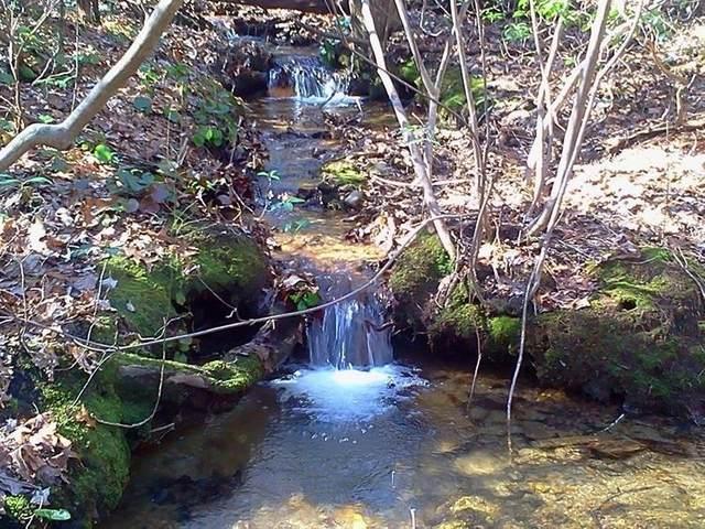 0 Cold Stream Trail #158, Jasper, GA 30143 (MLS #9049865) :: Maximum One Realtor Partners