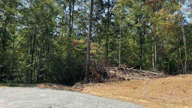 0 Dustin Brook Lane #8, Clarkesville, GA 30523 (MLS #9050194) :: Athens Georgia Homes