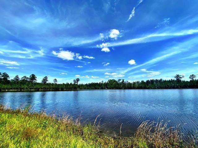 0 Sandy Creek Road, Toomsboro, GA 31090 (MLS #9050573) :: Crown Realty Group