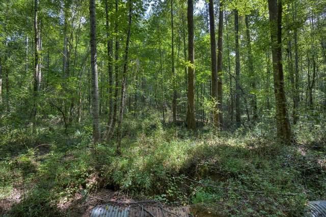 0 Randall Creek Road, Canton, GA 30115 (MLS #9051244) :: Grow Local