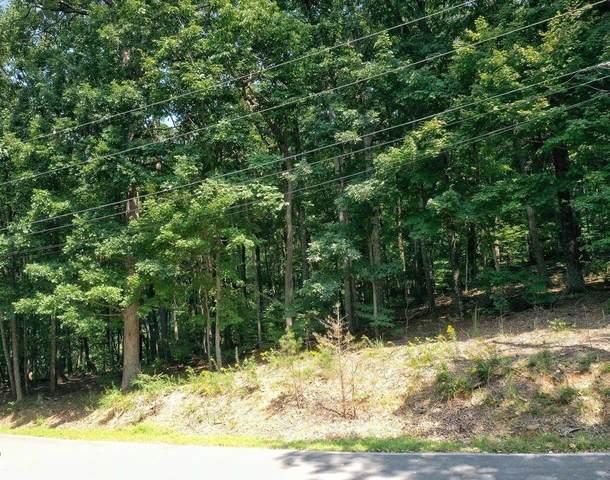 4546 Sassafras Trail, Jasper, GA 30143 (MLS #9051422) :: Athens Georgia Homes