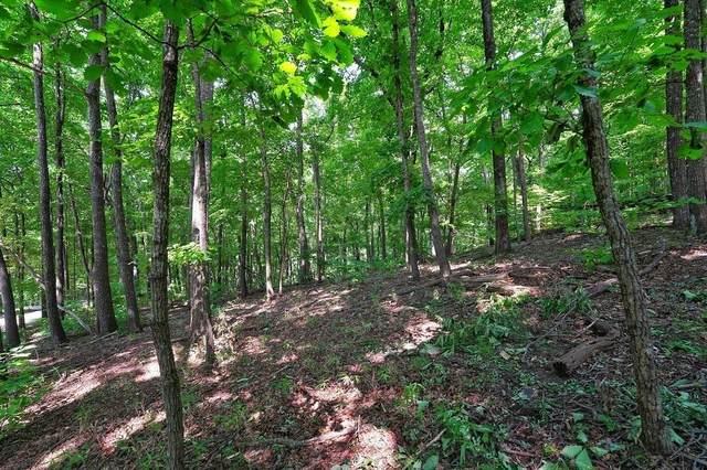 4548 Sassafras Mountain Trail, Jasper, GA 30143 (MLS #9051448) :: Athens Georgia Homes