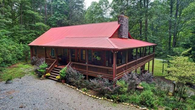 123 Coles Crossing Road, Mineral Bluff, GA 30559 (MLS #9051692) :: The Atlanta Real Estate Group