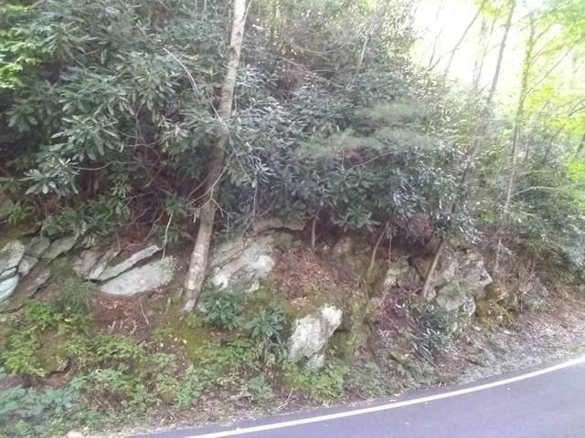 0 Alex Mtn Lot 28, Sky Valley, GA 30537 (MLS #9051813) :: RE/MAX Eagle Creek Realty