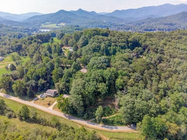 0.3 Acres On Johnson Road, Hiawassee, GA 30546 (MLS #9052068) :: Athens Georgia Homes