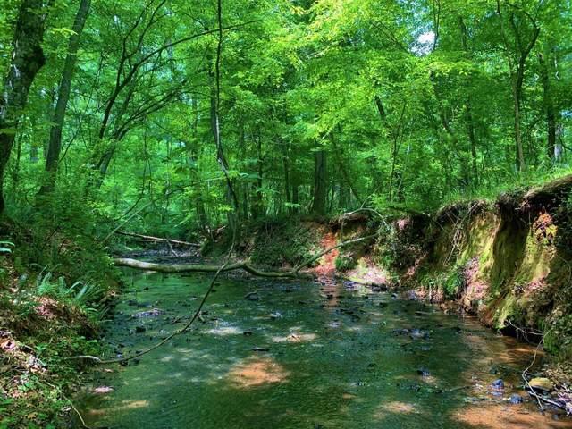 0 N Highway 11, Monticello, GA 31064 (MLS #9053689) :: RE/MAX Eagle Creek Realty