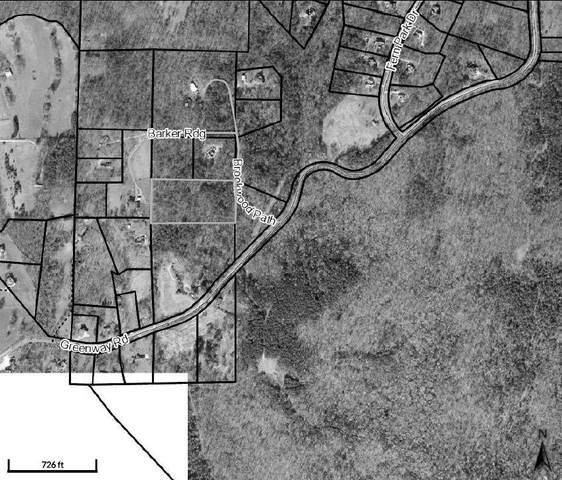 0 Brookwood Path, Dawsonville, GA 30534 (MLS #9054238) :: Cindy's Realty Group