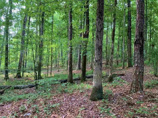 0 N Highway 11, Monticello, GA 31064 (MLS #9054529) :: RE/MAX Eagle Creek Realty