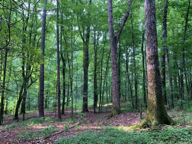 0 N Highway 11, Monticello, GA 31064 (MLS #9054556) :: RE/MAX Eagle Creek Realty