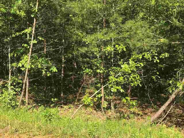 0 Samson Way Lot 9, Cleveland, GA 30528 (MLS #9054600) :: RE/MAX Eagle Creek Realty