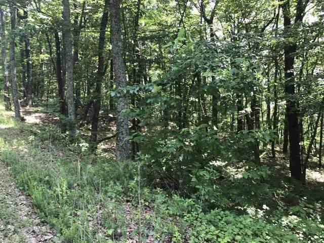 2 Mountain Oak, Cleveland, GA 30528 (MLS #9054623) :: RE/MAX Eagle Creek Realty
