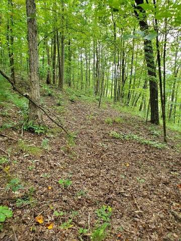 1696 Shade Tree Drive, Talking Rock, GA 30175 (MLS #9054650) :: The Durham Team