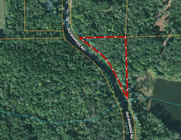 433 Old Roanoke Rd East 1 16 Road, Bowdon, GA 30108 (MLS #9055289) :: Crown Realty Group