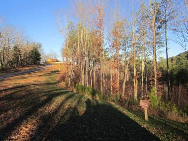 0 Ridge Peak Vw Lot 60, Blairsville, GA 30512 (MLS #9055513) :: Rettro Group