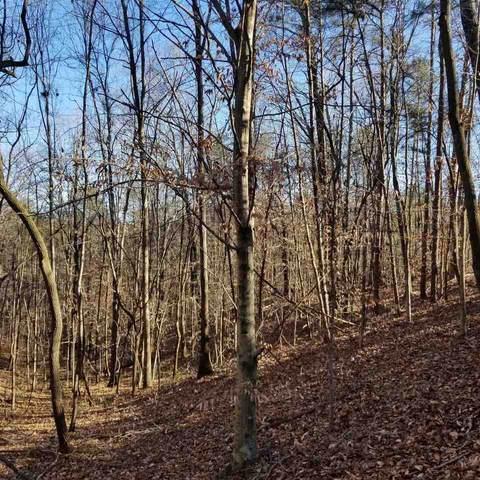 365 S Mccollum Drive Tract 3, Canton, GA 30114 (MLS #9056255) :: Statesboro Real Estate