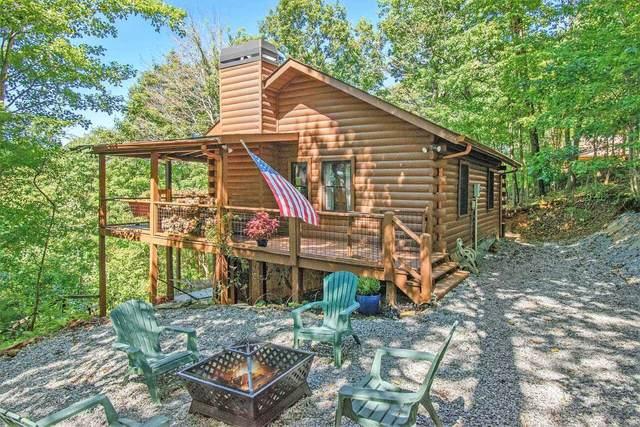 498 Cohutta Mountain Road, Cherry Log, GA 30522 (MLS #9056482) :: Crest Realty