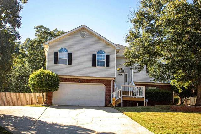 235 River Trace Court, Mcdonough, GA 30253 (MLS #9056547) :: Michelle Humes Group
