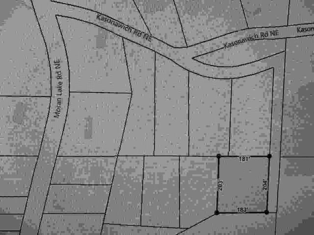 0 Moran Lake Road, Rome, GA 30161 (MLS #9056587) :: Statesboro Real Estate