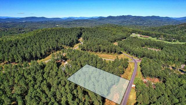 LT143 Thirteen Hundred, Blairsville, GA 30512 (MLS #9056756) :: Rettro Group