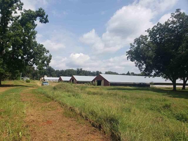 1156 Levie Road, Montezuma, GA 31063 (MLS #9058974) :: Buffington Real Estate Group