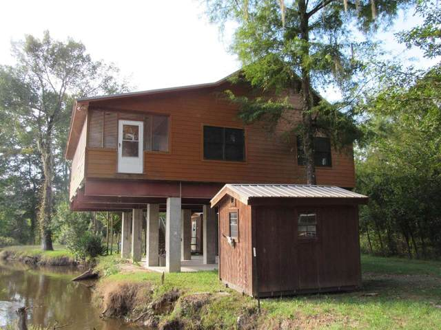 162 Bluff Road, Midville, GA 30441 (MLS #9059541) :: EXIT Realty Lake Country