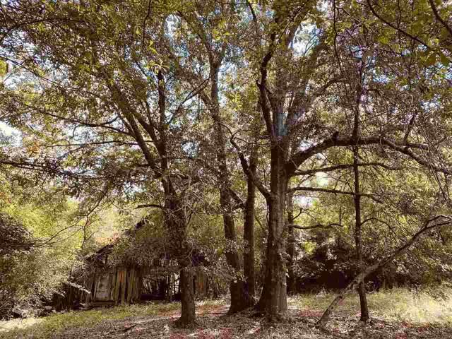 0 Highway 85, Woodbury, GA 30293 (MLS #9063147) :: HergGroup Atlanta