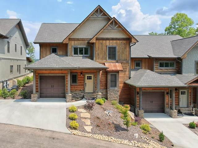 80 Lower Knoll Drive, Blue Ridge, GA 30513 (MLS #9063443) :: Regent Realty Company