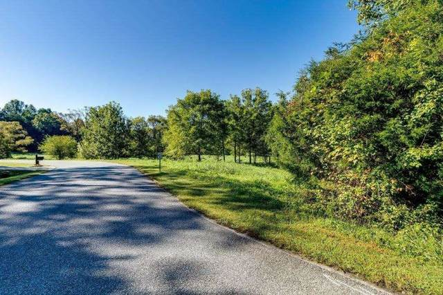 0 Wayward Winds, Demorest, GA 30535 (MLS #9063635) :: HergGroup Atlanta
