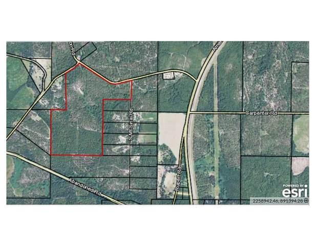 0 Mt Sinai Church Road, Rupert, GA 31081 (MLS #9063685) :: Statesboro Real Estate