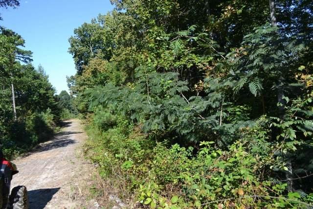 00002 Brushy Mountain Road, Braswell, GA 30153 (MLS #9064532) :: Statesboro Real Estate