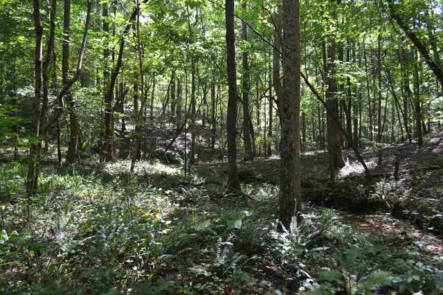 00007 Brushy Mountain Road, Braswell, GA 30153 (MLS #9064542) :: Statesboro Real Estate