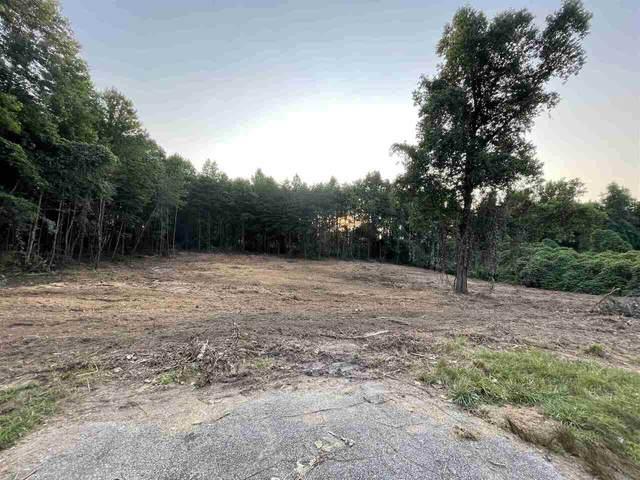 0 Asbestos Road, Cleveland, GA 30528 (MLS #9065042) :: Statesboro Real Estate