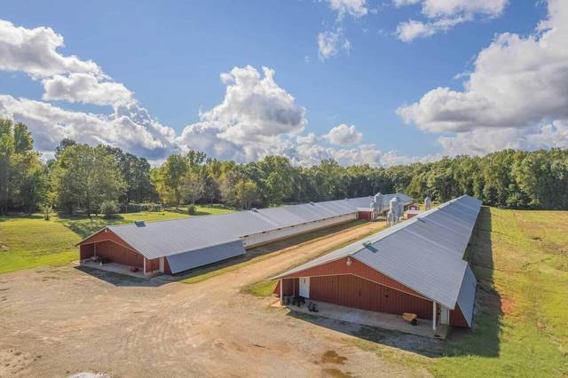 100 Canon Farm Road, Canon, GA 30520 (MLS #9065043) :: AF Realty Group