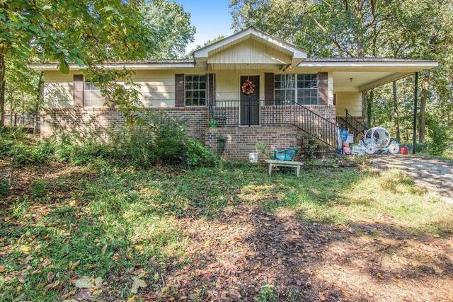 251 India Drive, Trion, GA 30753 (MLS #9065884) :: EXIT Realty Lake Country