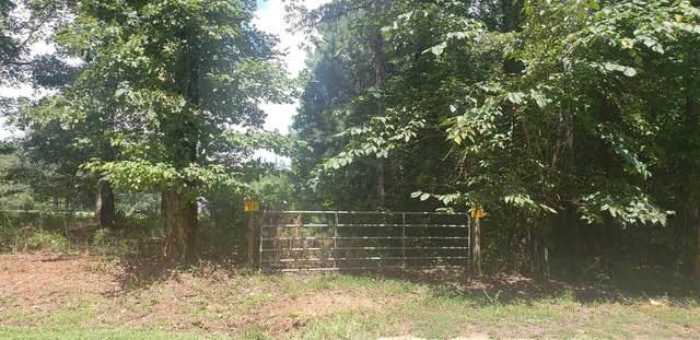 15 Dogwood Trail, Senoia, GA 30276 (MLS #9065995) :: Anderson & Associates
