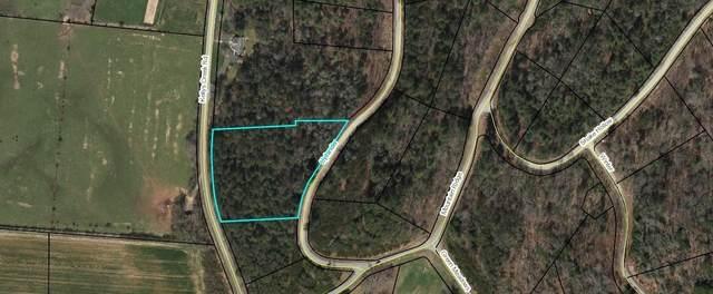 0 Ridges Of Rabun Lot 3, Rabun Gap, GA 30568 (MLS #9066188) :: Statesboro Real Estate