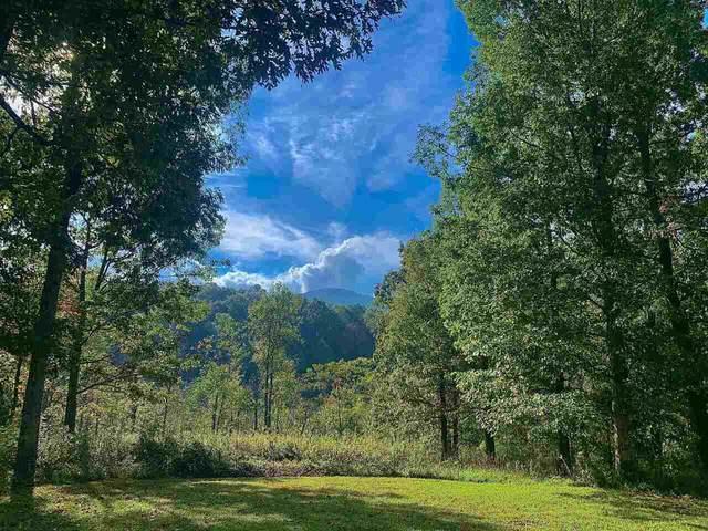LT 352 Lake Vista Court, Ellijay, GA 30536 (MLS #9067096) :: Statesboro Real Estate