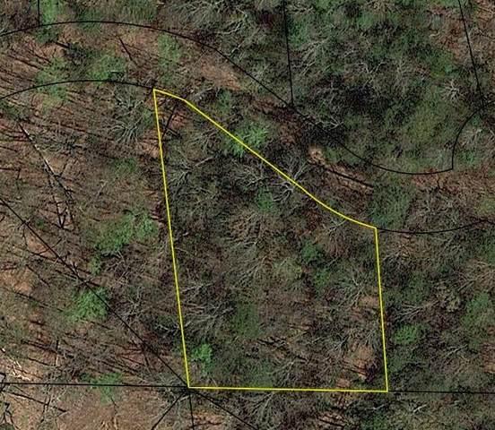851 Larkspur Lane, Clayton, GA 30525 (MLS #9067237) :: Statesboro Real Estate