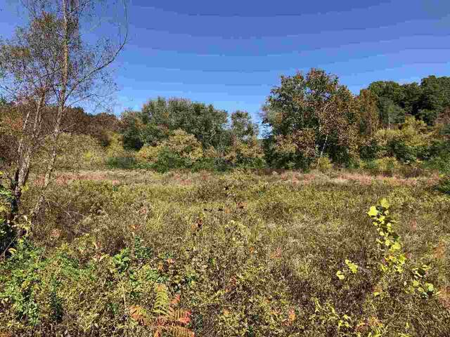 0 Claude Sims Road, Cleveland, GA 30528 (MLS #9067280) :: Statesboro Real Estate